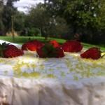 cheesecake_