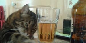 chaka_biere