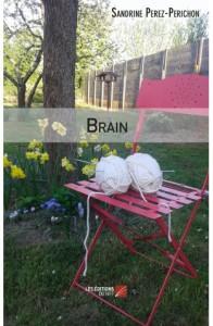 brain-sandrine-perez-perichon