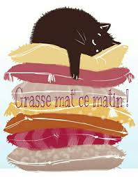 grasse_mat