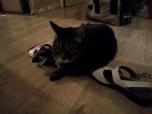 chaka_shoes