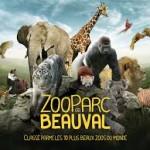 zoo_beauval